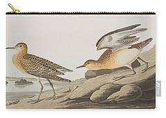 Buff Breasted Sandpiper Carry-all Pouch