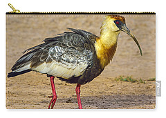 Buff-necked Ibis Carry-all Pouch