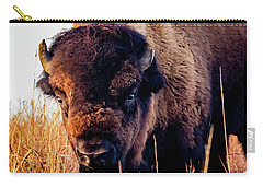 Buffalo Face Carry-all Pouch by Jay Stockhaus