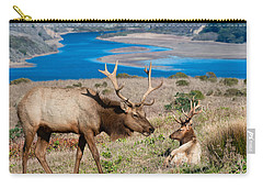 Bull Elk Above Tomales Bay Carry-all Pouch