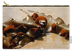Bull Kelp Carry-all Pouch by Lexa Harpell