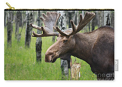 Bull Moose Portrait Carry-all Pouch