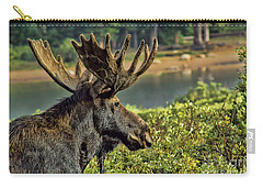 Bull Moose Carry-all Pouch by Steven Parker