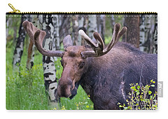 Bull Moose Up Close Carry-all Pouch by John Roberts