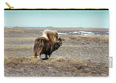 Bull Musk Ox Carry-all Pouch by Anthony Jones
