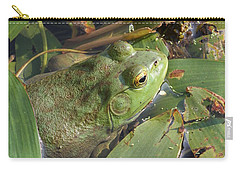 Bullfrog Carry-all Pouch