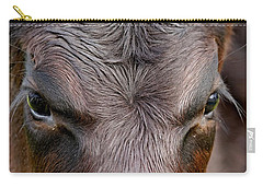 Bull's Eye Carry-all Pouch