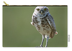 Carry-all Pouch featuring the photograph Burrowing Owl by Gary Lengyel