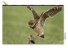 Burrowing Owl - Learning To Fly Carry-all Pouch by Meg Rousher