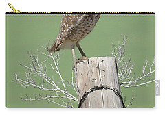 Burrowing Owl On Post Carry-all Pouch