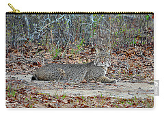 Carry-all Pouch featuring the photograph Bushed Bobcat by Al Powell Photography USA