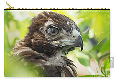 Buteo Jamaicensis Carry-all Pouch