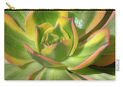 Carry-all Pouch featuring the photograph Cactus 4 by Jim and Emily Bush