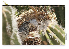 Cactus Wren Feather Carry-all Pouch