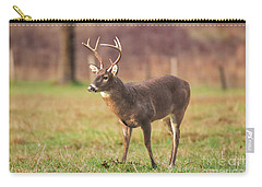 Carry-all Pouch featuring the photograph Cades Cove Buck by Geraldine DeBoer