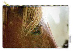 Carry-all Pouch featuring the photograph Cades Cove Horse 20160525_241 by Tina Hopkins