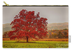 Carry-all Pouch featuring the photograph Cades Tree After The Rain by Geraldine DeBoer