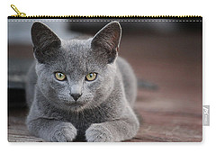 Carry-all Pouch featuring the photograph Caesar by Rowana Ray