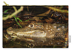 Caiman Mom Carry-all Pouch by Arthur Dodd