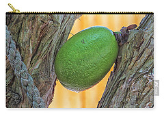 Carry-all Pouch featuring the photograph Calabash Fruit by Bill Barber