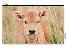 Calf In The High Grass Carry-all Pouch by Nick Biemans