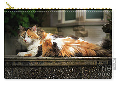 Carry-all Pouch featuring the photograph Calico Cat by Craig J Satterlee