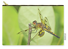 Calico Pennant Carry-all Pouch