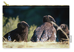 California Condors Carry-all Pouch