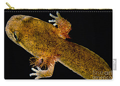 California Giant Salamander Larva Carry-all Pouch by Dant� Fenolio