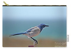 California Scrub Jay Carry-all Pouch