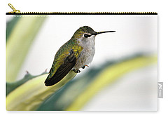 Calliope Hummingbird On Agave Carry-all Pouch
