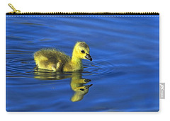 Canada Gosling Goes For A Swim Carry-all Pouch