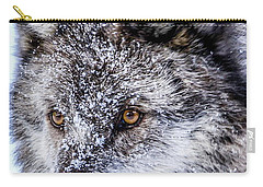 Canadian Grey Wolf In Portrait, British Columbia, Canada Carry-all Pouch