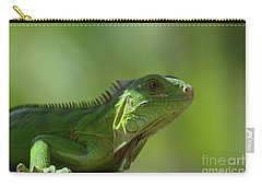 Candid Green Iguana In The Carribean Carry-all Pouch by DejaVu Designs