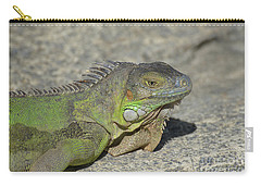 Candid Of A Green Iguana On A Rock Carry-all Pouch by DejaVu Designs