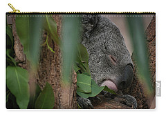 Canopy Nap Carry-all Pouch