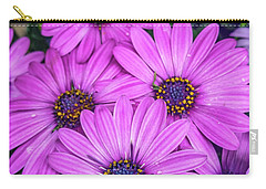 Cape Daisys - Purple Carry-all Pouch