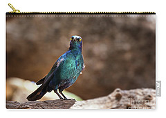 Cape Glossy Starling Carry-all Pouch by Jane Rix