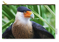Caracara 1 Carry-all Pouch by Arthur Dodd