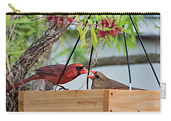 Cardinal Feeding  Carry-all Pouch