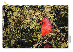 Cardinal I Carry-all Pouch