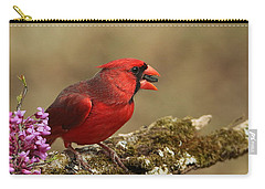 Cardinal In Spring Carry-all Pouch by Sheila Brown