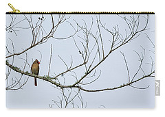 Carry-all Pouch featuring the photograph Cardinal In Tree by Richard Rizzo