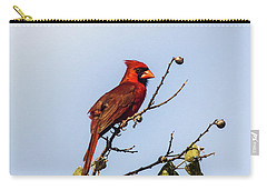 Cardinal On Treetop Carry-all Pouch by Robert Frederick