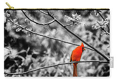 Cardinal... Carry-all Pouch