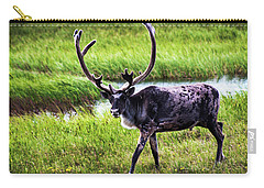 Carry-all Pouch featuring the photograph Caribou by Anthony Jones