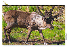 Caribou Antlers In Velvet Carry-all Pouch by Allan Levin