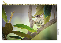 Carolina Wren #1 Carry-all Pouch