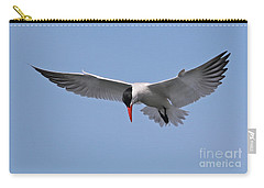 Caspian Tern Carry-all Pouch
