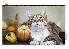 Cat And Pumpkins Carry-all Pouch by Nailia Schwarz